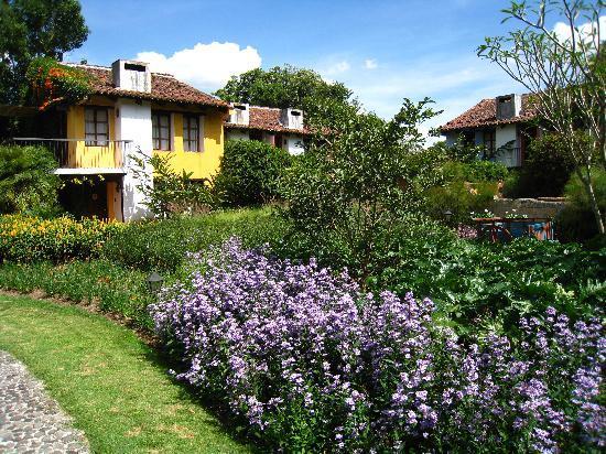 Quinta de las Flores: Lovely gardens