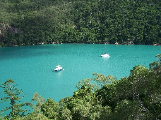 Whitsunday Islands, ออสเตรเลีย: Nara Inlet from top of the hill