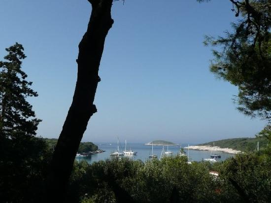 Palmizana: Dagmar's