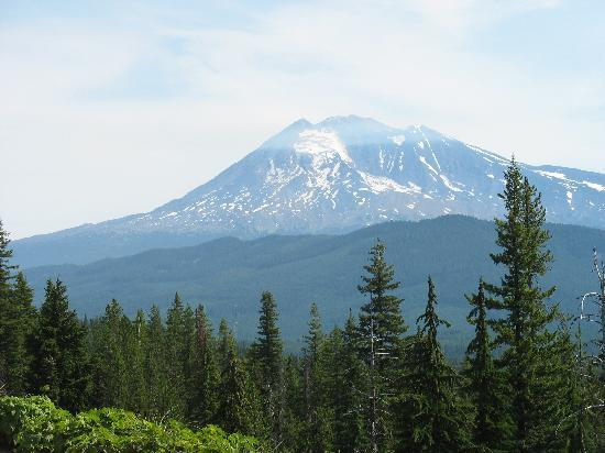 Trout Lake, WA: Mount Adams