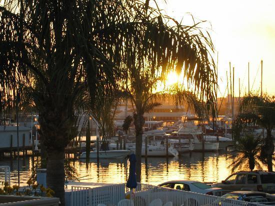 Sea Captain Resort on the Bay : sunrise june07