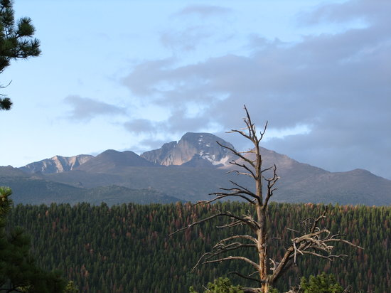 Photo of Moraine Park Campground Estes Park