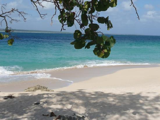 Villa Cayo Saetia: uno scorcio della spiaggia