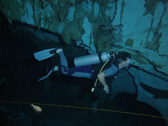 Pluto Dive: cenote dive