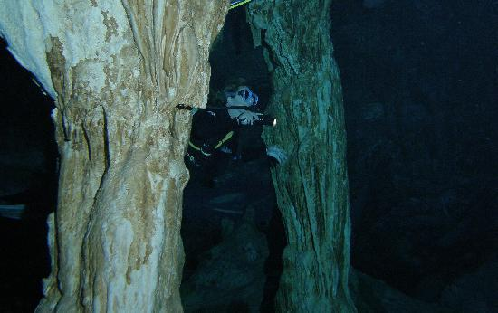 Pluto Dive: Dos Ojos cenote dive