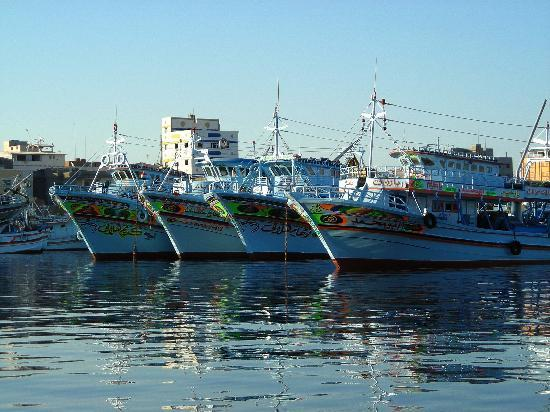 Damietta's fishing fleet at Ras El Bar