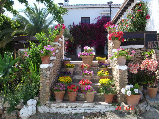 La Noria: Flowers to welcome you