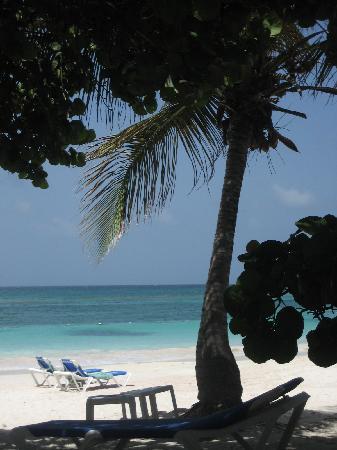 Pineapple Beach Club Antigua: The beach
