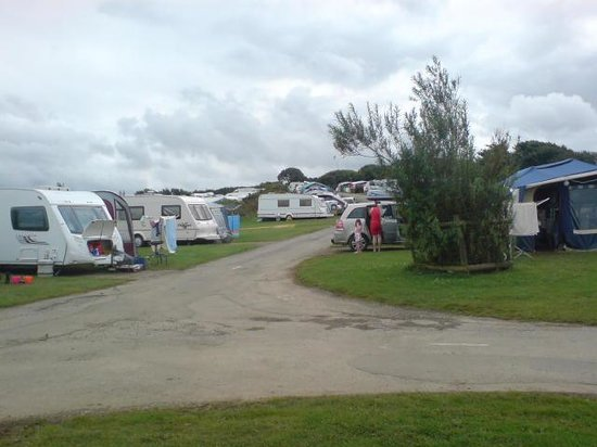 Widemouth Bay Caravan Park:                                                       MAIN CAMPING FIELD