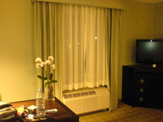 Hampton Inn Suites Detroit-Canton: Window and TV area