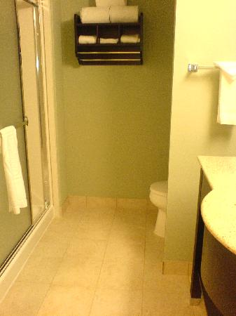 Hampton Inn Suites Detroit-Canton: Bathroom (walk-in shower)