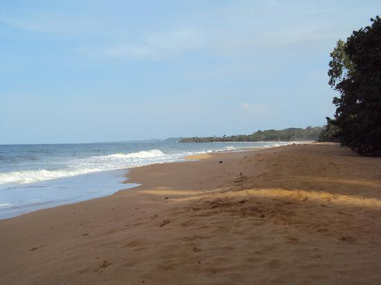 Playa Bluff Lodge: Miles of this!