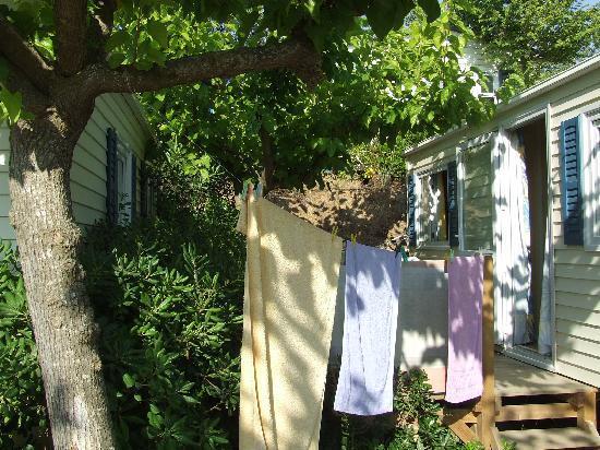 Camping Tucan: La terrasse
