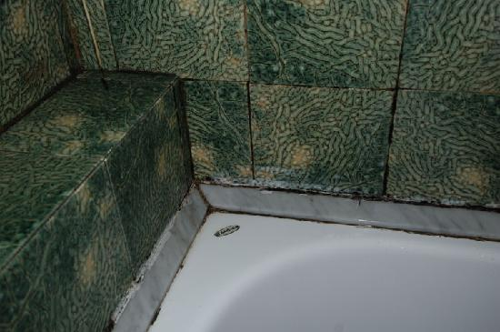 Park Hotel Blanc et Noir: here our bathroom - some were worse!
