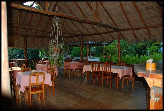 Bernique Guesthouse: La veranda dove si consuma l'ottima prima colazione