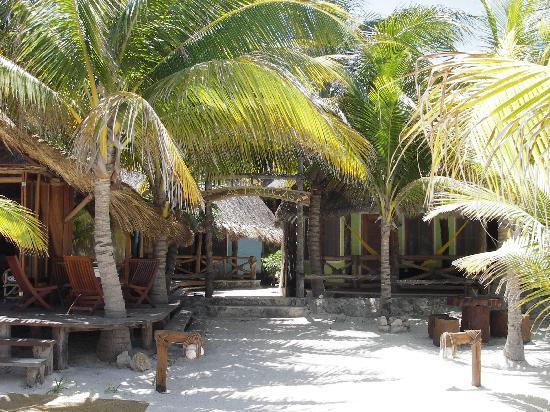Holbox Hotel Casa las Tortugas - Petit Beach Hotel & Spa : The hotel