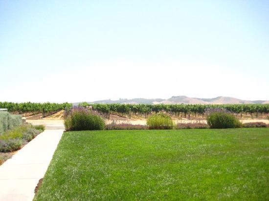 Breakaway Tours & Event Planning: wine tasting