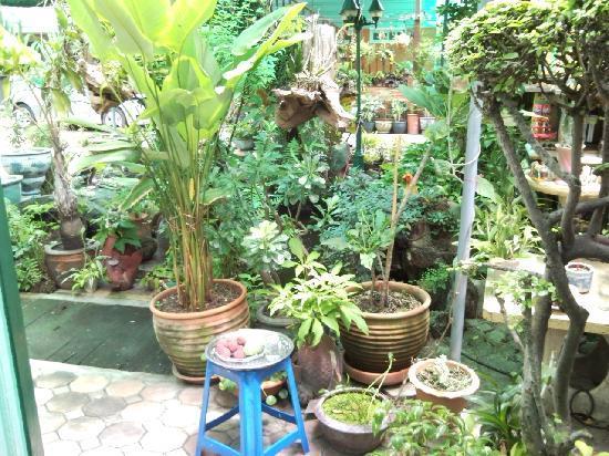 Sam Sen Sam Place: Garden area