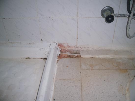 Club Hotel Pineta: mouldy shower