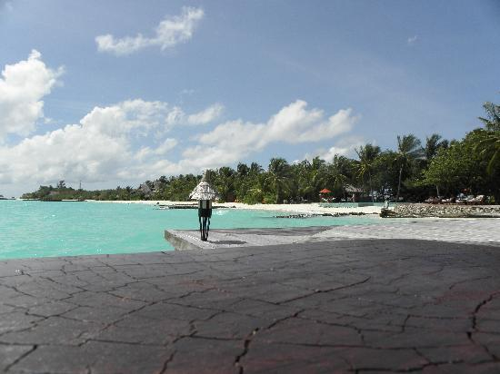 Taj Exotica Resort & Spa: beach and pool