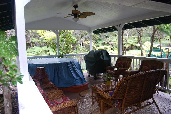 Ohia Plantation House: hot tub and grill