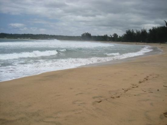 Hanalei Beach: A beautiful beach all to ourselves :)