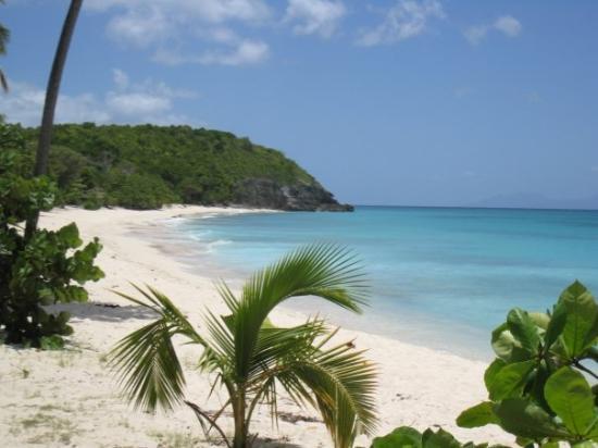 Tripadvisor Guadeloupe Hotels