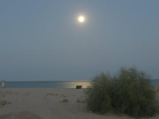 Остров Канела, Испания: isla canela