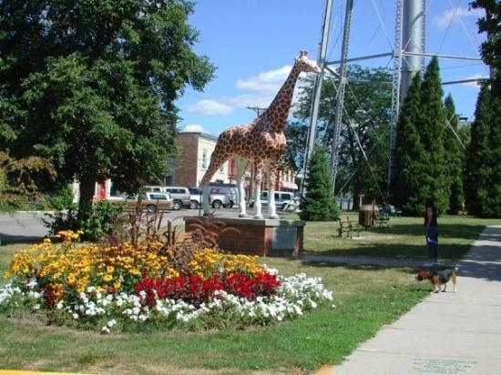 Delavan, WI: Giraffe in park with Historic Circus District plaque on pedestal.