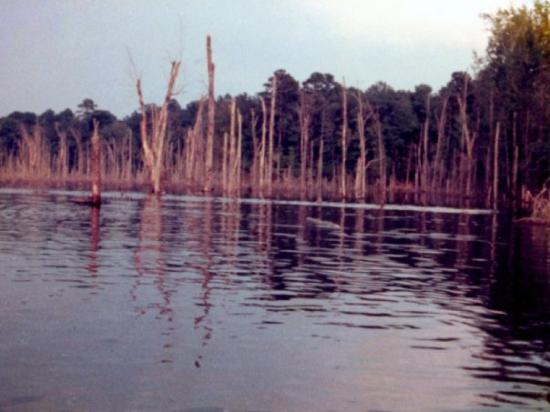 Kincaid Reservoir - fishing near Alexandria, Louisiana.