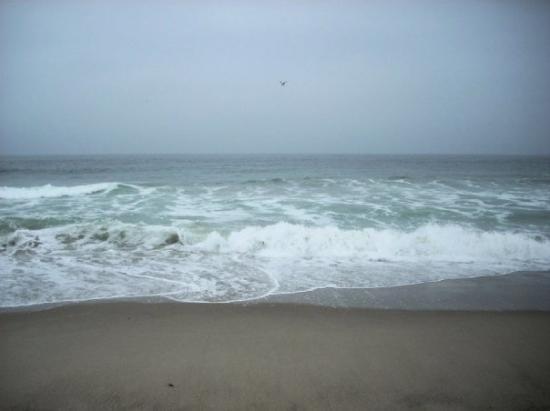 Still Zuma Beach