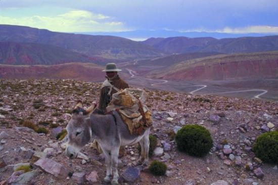 Argentina: Quebradas del oeste de Salta.