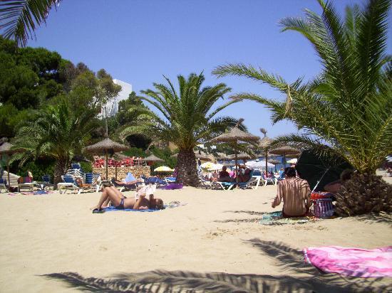Hotel Rocamarina: Es Forti beach
