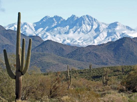 Phoenix, AZ, United States Alexsphoto