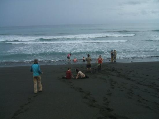 Carate, Costa Rica: In the waves, in the rain, relaxing