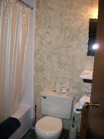 Biarritz Motel Suites & Apartments: Bathroom