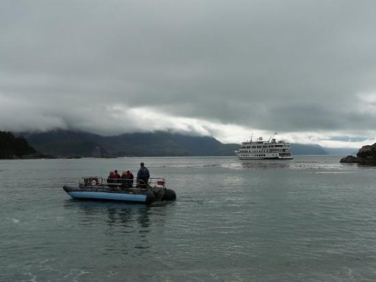 Glacier Bay National Park and Preserve Photo