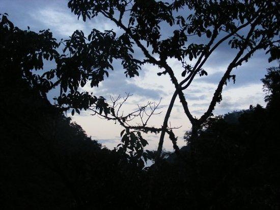 Manu National Park, Peru: Manu NP
