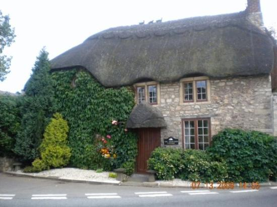 Delightful Radstock, UK: Thatched Roof House
