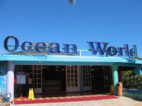 Ocean World Adventure Park: Nous y trouvons aujourd'hui en plus du monde aquatique, des tigres, des oiseaux, une marina, un