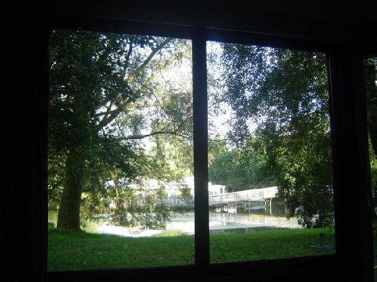 Center Parcs de Eemhof: The view from our chalet