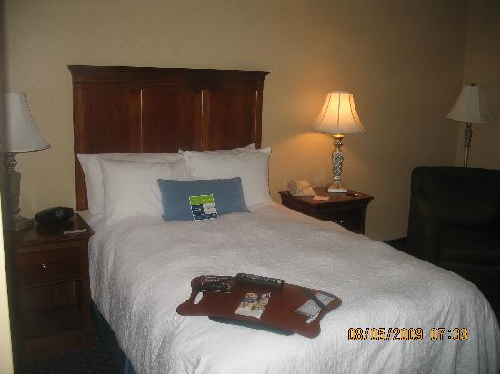 Hampton Inn & Suites Fredericksburg South: DOUBLE BED