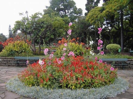 Jardim de São Francisco