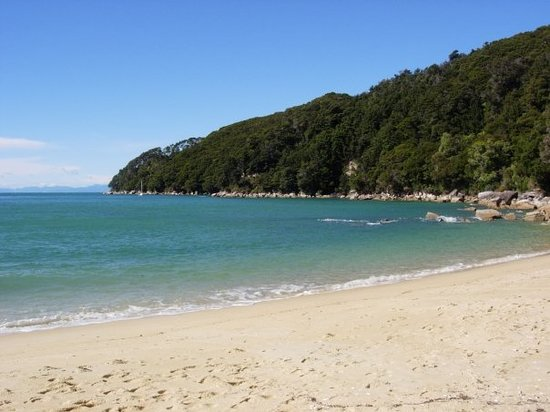 ‪‪Abel Tasman National Park‬, نيوزيلندا: Abel Tasman National Park beach‬