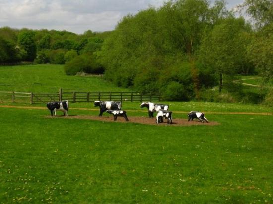 Milton Keynes, UK: concrete cows