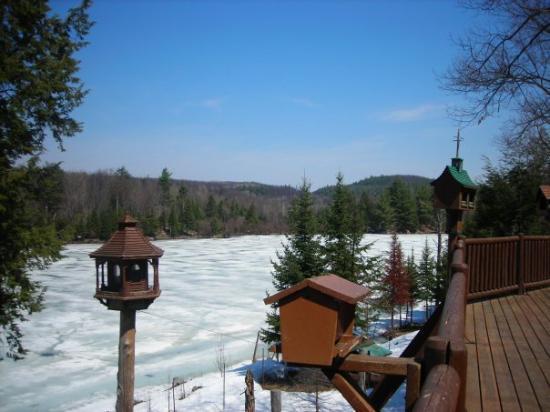 Montebello, Canadá: Vue depuis le parc Oméga