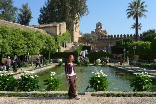 Gardens of alcazar picture of alcazar de los reyes for Jardines cordoba