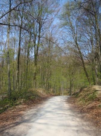 Schwäbisch Gmünd, Deutschland: On the way to Rosenstein Ruins