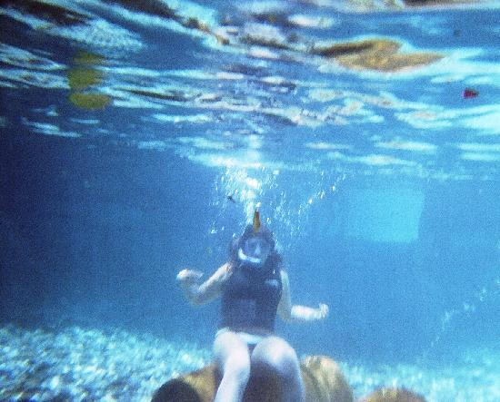 Snorkeling In The Lazy River
