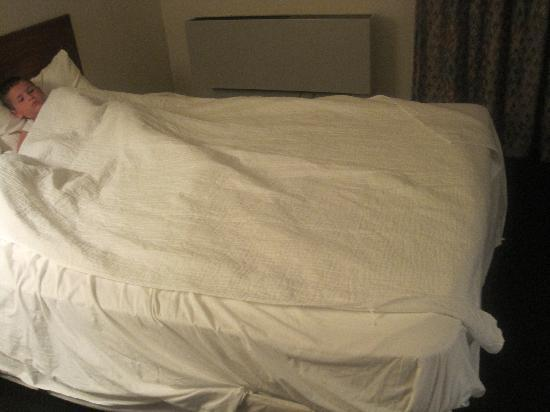 Carousel Inn & Suites: They gave me a mattress protector as a blanket LOL